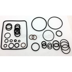 KIT O-RINGS BOMBA SERIE 1506